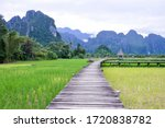 Wooden Bridge In The Rice Fiel...