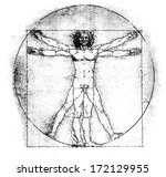 Vetruvian Man  Human Anatomy...