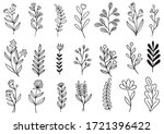 collection forest fern...   Shutterstock .eps vector #1721396422