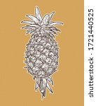 pineapple  hand draw sketch... | Shutterstock .eps vector #1721440525