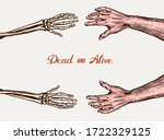 Human And Skeleton Hands. Bony...