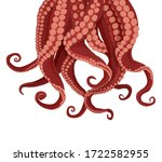 Tentacles Octopus And...