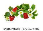 Strawberries Waved Arrangement...