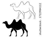 Camel Silhouette And Sketch...