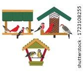 Winter Bird Feeder  Northern...