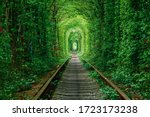 A Railway In The Spring Forest. ...