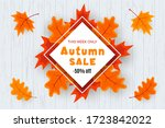 autumn sale vector banner...   Shutterstock .eps vector #1723842022
