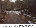 Beautiful Hikining Route In...