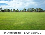 Background Texture Of A Large...
