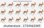 deer walk cycle  vector... | Shutterstock .eps vector #1724463385