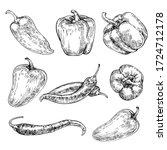 Pepper Hand Drawn Set. Sketch...