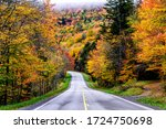 Autumn, Monongahela National Forest, US Route 250, West Virginia, USA