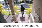 Package Thief Caught On Video...
