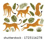 Vector Set Of Leopards Or...