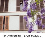 wooden window with shutters and ...   Shutterstock . vector #1725503332