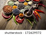spices and herbs | Shutterstock . vector #172629572