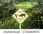 """Sign states """"Caution Aggressive Elk"""" in California's Redwood Coast and Newton Drury Scenic Parkway. Roosevelt elk were reintroduced to the area. Elk are huge, aggressive and unpredictable wildlife.  - stock photo"""