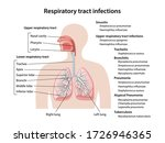 human respiratory system with...   Shutterstock .eps vector #1726946365