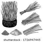 nutritious homegrown wheat... | Shutterstock .eps vector #1726947445