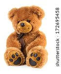 toy teddy bear isolated on... | Shutterstock . vector #172695458
