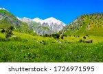 Mountain green valley peak snow. Green mountain valley snow peak background. Mountain peak snow landscape