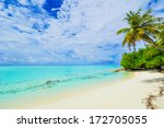 tropical beach with palm tree ... | Shutterstock . vector #172705055