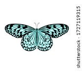 butterfly isolated colorful... | Shutterstock .eps vector #1727119315