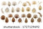 Tropical Boho Dried Palm Leaves ...