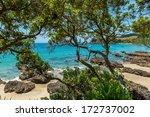 Palm Beach View  Waiheke Islan...