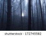 Moonlight Through Creepy Forest