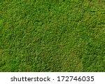 green grass texture from a... | Shutterstock . vector #172746035