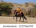 Peruvian Paso Horse And Rider...