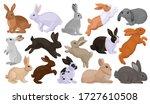 Rabbit Vector Cartoon Set Icon. ...