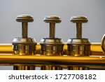 Close Up Of The Valves Of A...