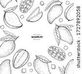 vector frame with mango. hand... | Shutterstock .eps vector #1727892058