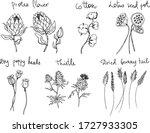 set of decorative line art... | Shutterstock .eps vector #1727933305