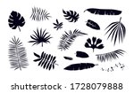 Stock Vector Set Of Tropical...