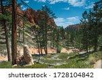 Bryce Canyon Veiw. Utah  Usa...