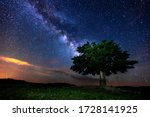 Milky Way And Tree On The...
