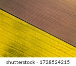 Aerial View Of Yellow Colza...