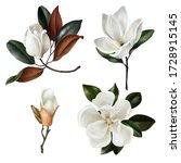 Set Of Realistic Botanical...