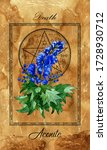 death. major arcana tarot card...   Shutterstock . vector #1728930712