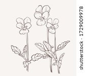 sketch floral botany collection.... | Shutterstock .eps vector #1729009978
