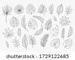tropical leaves in doodle style.... | Shutterstock .eps vector #1729122685
