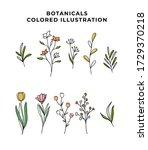 vector big set botanic elements ...   Shutterstock .eps vector #1729370218