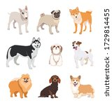 cartoon dog breeds flat icon... | Shutterstock .eps vector #1729814455