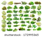Vegetables Collection Isolated...