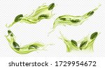 splash of green tea with mint ... | Shutterstock .eps vector #1729954672