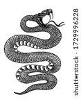 illustration of poisonous snake ... | Shutterstock .eps vector #1729996228