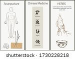 chinese medicine  herbs and... | Shutterstock .eps vector #1730228218